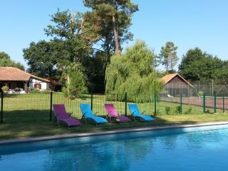 Maison de charme 12 personne piscine tennis privés, Laluque
