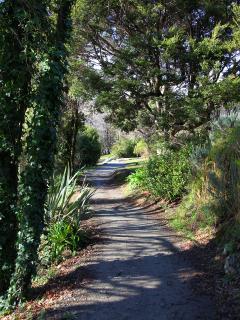 Walking / biking track