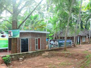 Thriphala Ayurveda panchakarma Centre, Kovalam