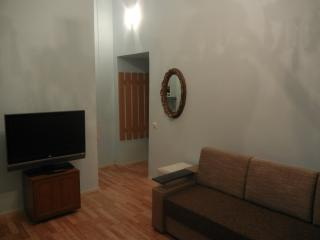Rent Lviv Apartament in center.