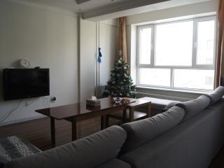 Beautiful family home, Ulan Bator