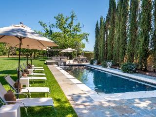 Vineyard Estate - Napa Valley, Calistoga