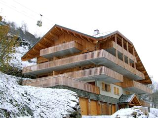 Fantastic 3 bed apartment close to ski-station, Vaujany