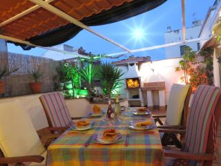 Apartment Attic, Airport Barcelona, BBQ, 3 bedrooms,  HL (V)