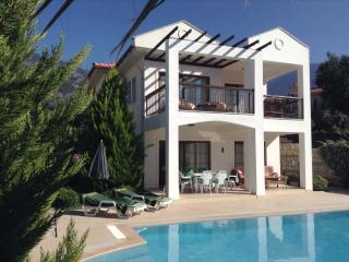 Villa Altin