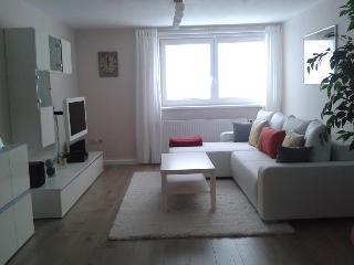 Allgau Apartment - Executive Apartment