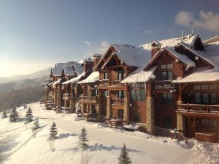 Luxury Ski In / Ski Out Deer Valley Townhome
