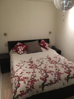 Queen-size bed in downstairs bedroom