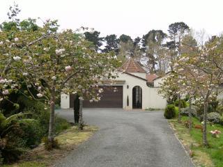 Willows End - Riverstay House, Kapiti Coast