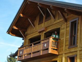 Praz de Lys Amazing Duplex Ski Apartment on slopes, Taninges