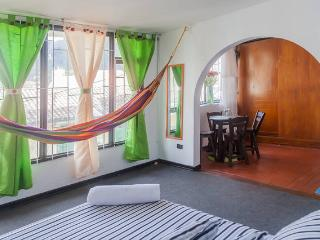 Cozy Private Studio Apt Candelaria