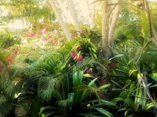 Surya Garden - Mud House, Tangalle