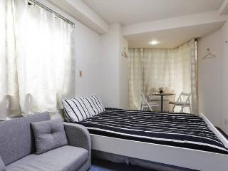 Cozy place in Roppongi at a reasonable price B21, Minato