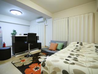 Gorgeous Modern Apt near Skytree B9, Sumida