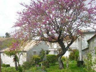 Gîte du jardin, Mortagne-sur-Gironde