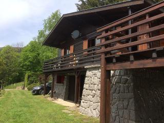 Grand chalet de montagne, vue panoramique, eau de source, sauna, en ALSACE