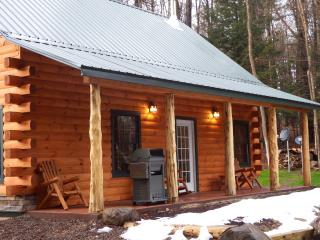 Adirondack Waterfalls Cabin Bran new, Glenfield
