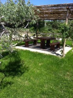 Dinner table at garden