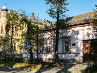Vila Olga, Sombor