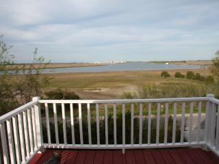 Fabulous Views, Quiet Neighborhood, Large Yard!, Charleston