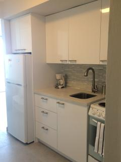Brand new kitchenette with quartz counter-top.