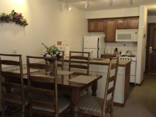 Rimfire Lodge - Full Studio with Full Kitchen, Snowshoe