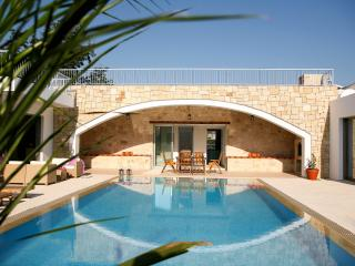 Magnificent villa,  indoor jacuzzi, pool, privacy, Miliou