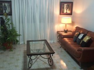 Caparra Village Penthouse Apartment, Bayamon