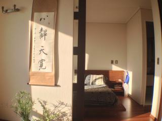 Cozy, Bright Apartment, Beautiful, Santiago