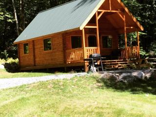 log cabin in the woods near ski resorts, Blakeslee