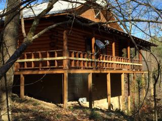 Cabin on Wolfpen Gap ATV Trail- Mena, Arkansas