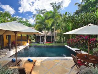 Jendela di Bali - UNIQUE 2 Bedrooms Ubud Bali villa. STUNNING pool