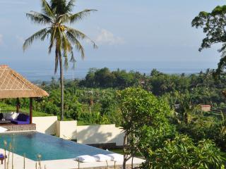 Villa Dewi Sri, Lovina Beach