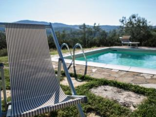 Beautiful Large Villa Near Florence Next to Famous Winery - Casa Rufina