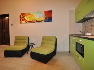 Select City Center Apartments - Evergreen Studio, Brasov