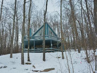 Impressive Mountain Home just minutes from the Ski Slopes!, McHenry