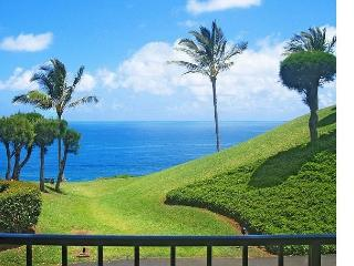 Affordable oceanview 1br in quiet oceanfront Sealodge at Princeville