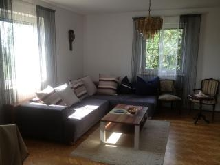 Nice And Spacious Flat Near Linz And Wels