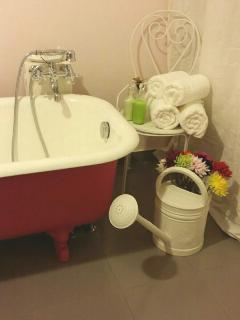Refurbished antique bathtub