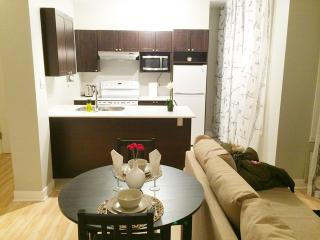 404- Luxurious 2 bedroom NDG, Montreal