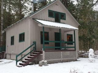 Family/pet friendly cabin, 1.5 acres in the woods