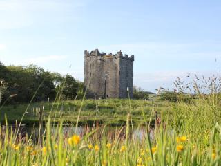 Smithstown Castle, Kilshanny