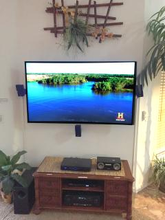 Curved 65' 4K TV with free Netflix, DVDs, and DirecT