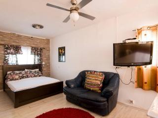 siesta apartaments great location, Tiberias