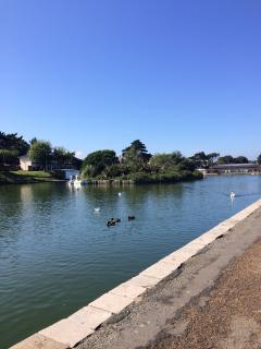 Ryde has a swimming pool with a view of the boating lake, with a retractable roof in the summer.