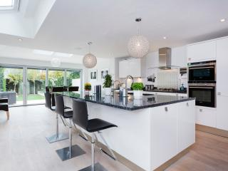 An immaculate three-bedroom house in leafy Earlsfield., Londres