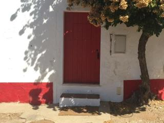 Pequena casa em vinhedo, Elvas