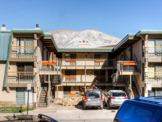 New Listing! Beautiful 2BR Aspen Condo w/Wifi & Modern Kitchen - Less Than 2 Blocks to the Gondola! Walking Distance From Everything Aspen Has to Offer