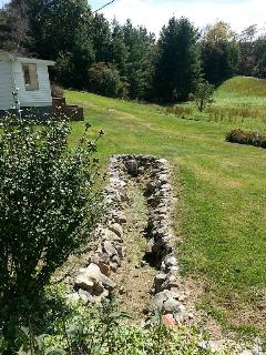 One of two small creeks on the property.