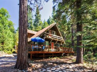 'The Cottage in the Woods' Lovely 4BR Nevada City Cabin on 1.5 Wooded Acres